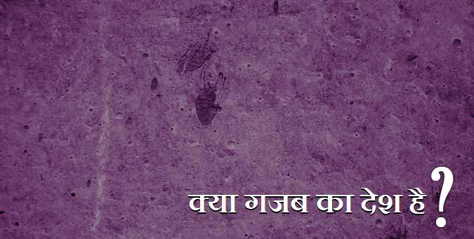 arvind, manish shishodia funding, vinod babbar, anna-baba ramdev, bjp, congress, election 2014