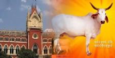 कोलकाता उच्च न्यायालय, ऐतिहासिक निर्णय, बकरीद पर खुलेआम गौ-हत्या, पूर्ण प्रतिबन्ध